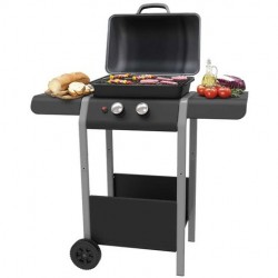 Barbecue a Gas con Pietra Lavica e Fornello