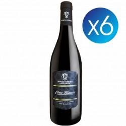 Etna Bianco - Tenuta Cuffaro - 6 bottiglie