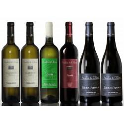 Selezione Vini Scalia e Oliva 6 Bottiglie